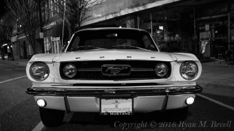 Mustang Front B&W Copyright