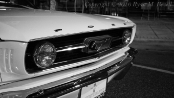 Mustang side B&W Copyright